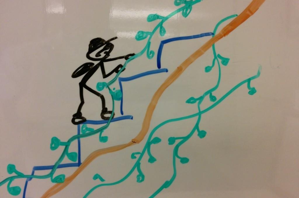 Climber Man climbs with kudzu